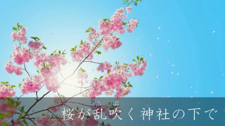 桜が乱吹く神社の下で【さくらみこ 新ED用BGM】