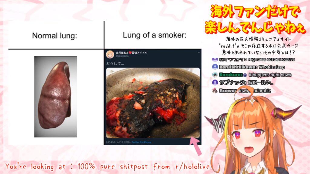hoho 海外ホロライブファンよ、お前らの行動はバレている ホロライブ桐生ココ KIRYU COCO reddit meme