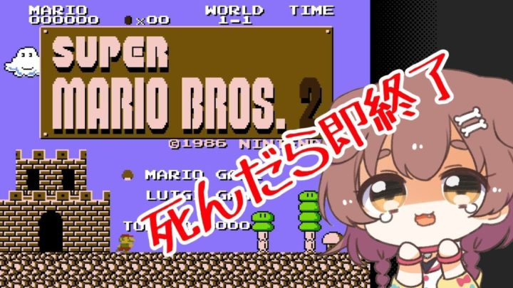 スーパーマリオブラザーズ2、しんだら即終了!!