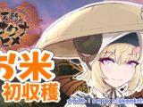 watame3 【天穂のサクナヒメ】大事に育てたお米を収穫じゃ!【角巻わため/ホロライブ4期生】