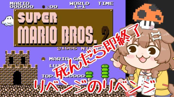 スーパーマリオブラザーズ2、しんだら即終了!!リベンジ!!!