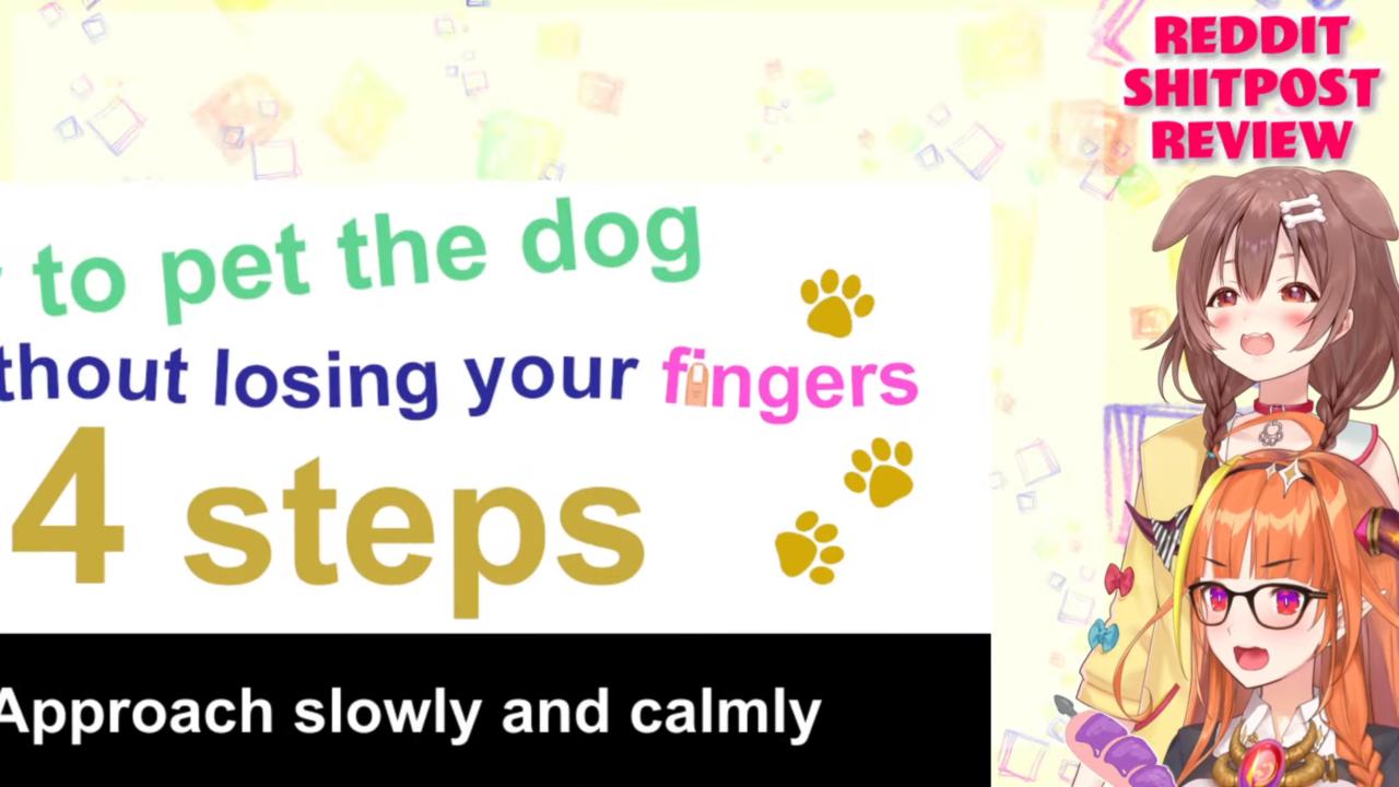 5888ea8ab4e4255a6be7287e4c4e4b72 REDDIT SHITPOST REVIEW with our dear doggo!