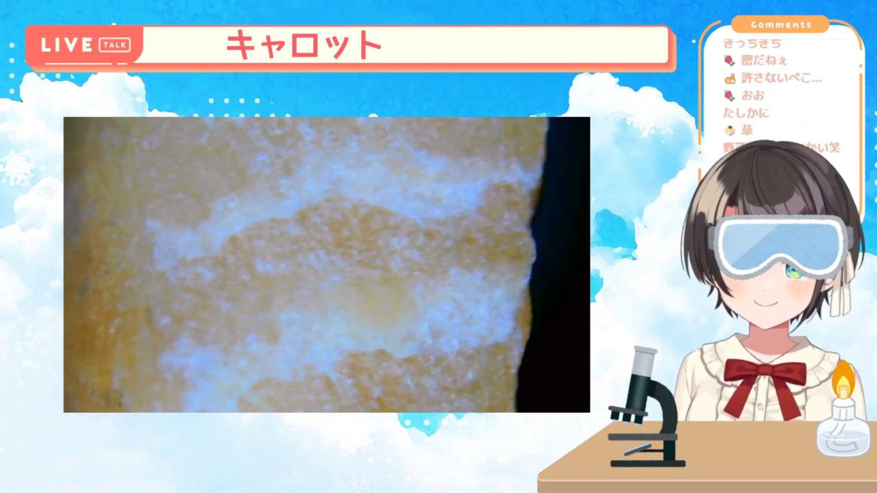 2bf9fcfa4ae5bfbbf2f66c689c09348f 【夏休み自由研究】顕微鏡配信しゅばあああああああ!!!!/Stream to see the micro world with a microscope【ホロライブ/大空スバル】