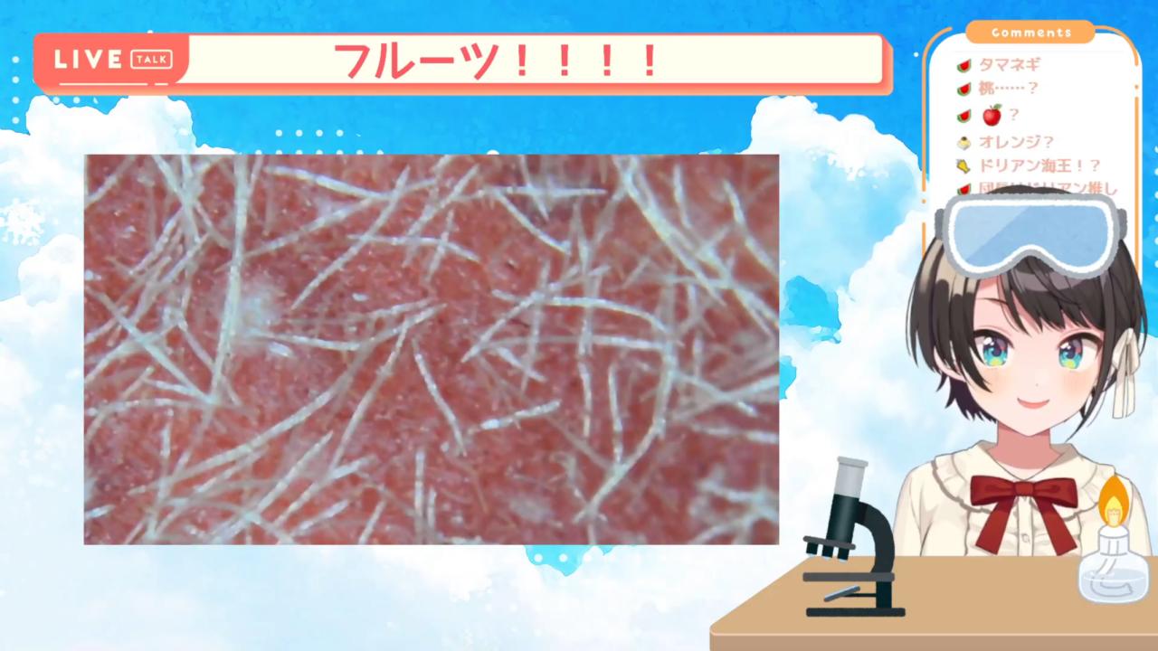 6d8277f31d946552892ab5fc6c853d36 【夏休み自由研究】顕微鏡配信しゅばあああああああ!!!!/Stream to see the micro world with a microscope【ホロライブ/大空スバル】