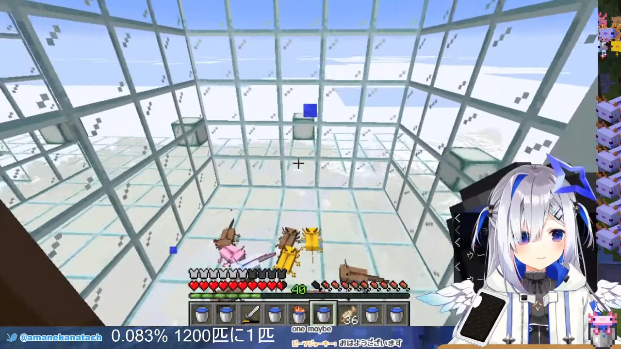 fc7a7dcc6f0ff06352567713e7e78bfa 【Minecraft】闇市店主、激激激レア青ウーパーチャレンジ!!【天音かなた/ホロライブ】
